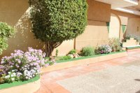 Bright, spacious 3, bedroom apartment on gated community with large pool (15)