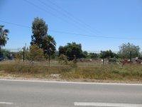 Plot in Rojales (2)