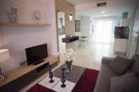 Stunning contemporary design 2 bed/2 bath apartments located in Residencial Laguna Park (2)