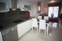 Stunning contemporary design 2 bed/2 bath apartments located in Residencial Laguna Park (9)
