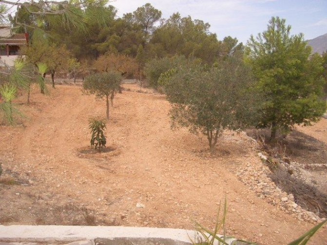 Villa in  Spain (20) - 47