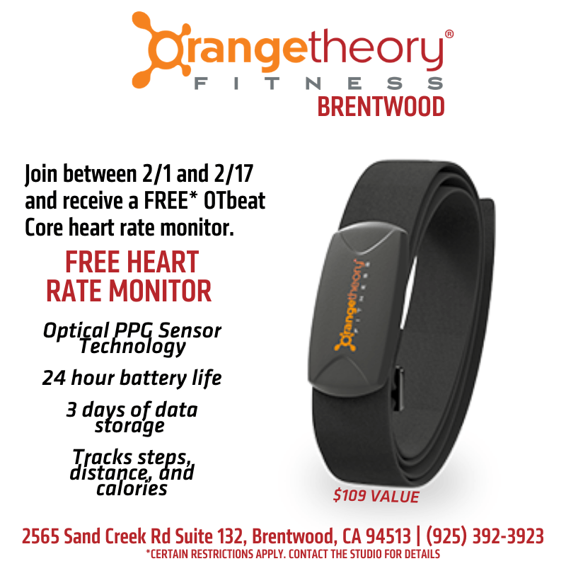 Free Heart Rate Monitor