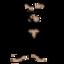 etherape