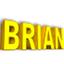 BRIAN simulator