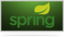 Spring Data MongoDB