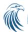 Apache Falcon