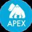 Apache Apex