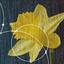 DFDL-Daffodil