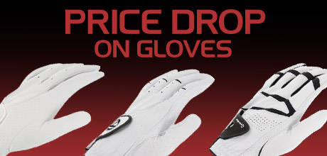 Price Drop on Gloves