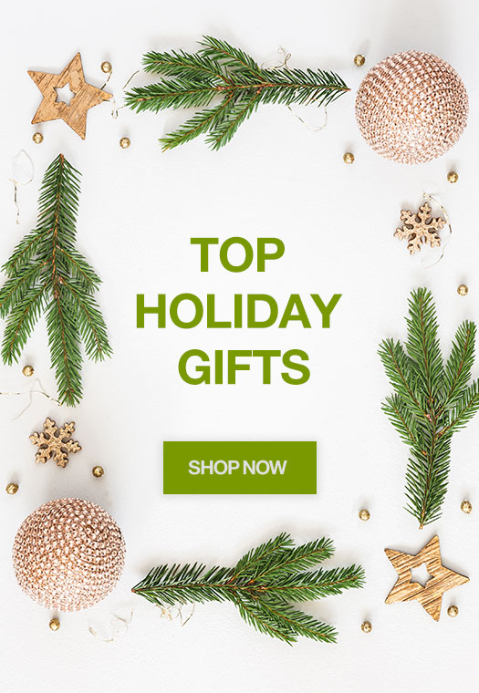 Top Holiday Picks