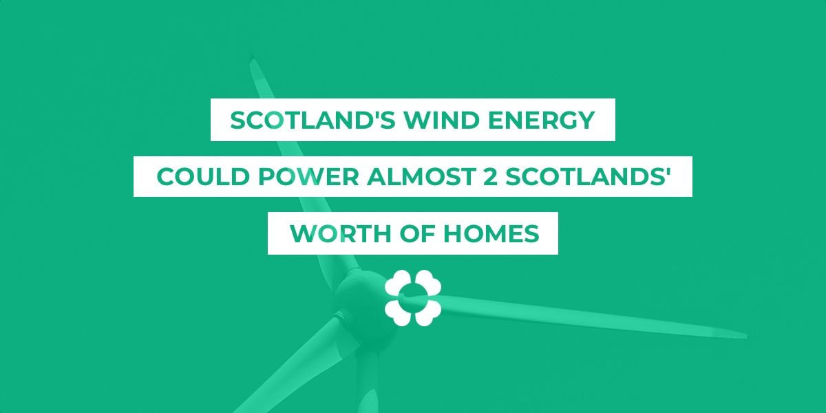 Scotland's wind energy could power almost 2 Scotlands' worth of homes