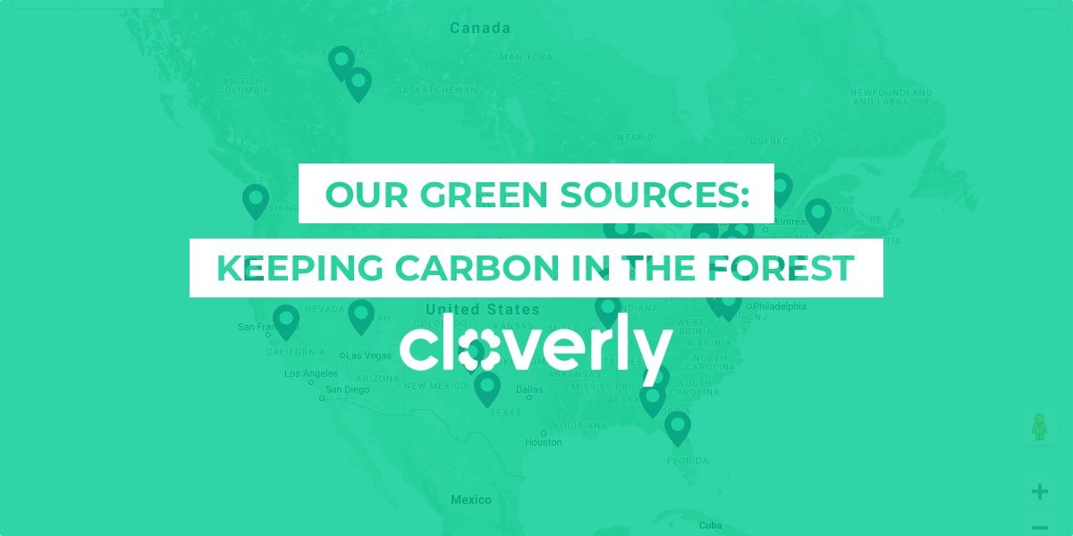 Our green sources: Keeping carbon in the forest