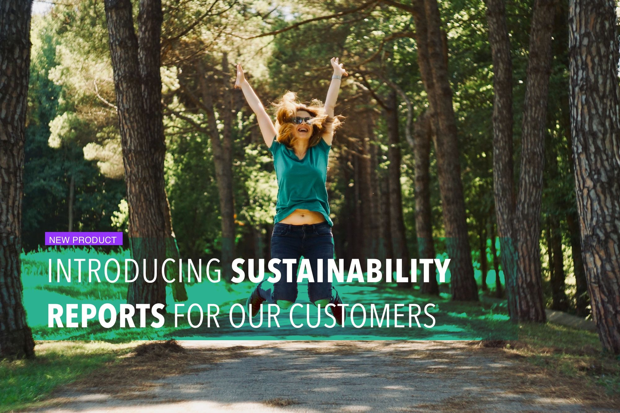 Introducing sustainability reports for our customers