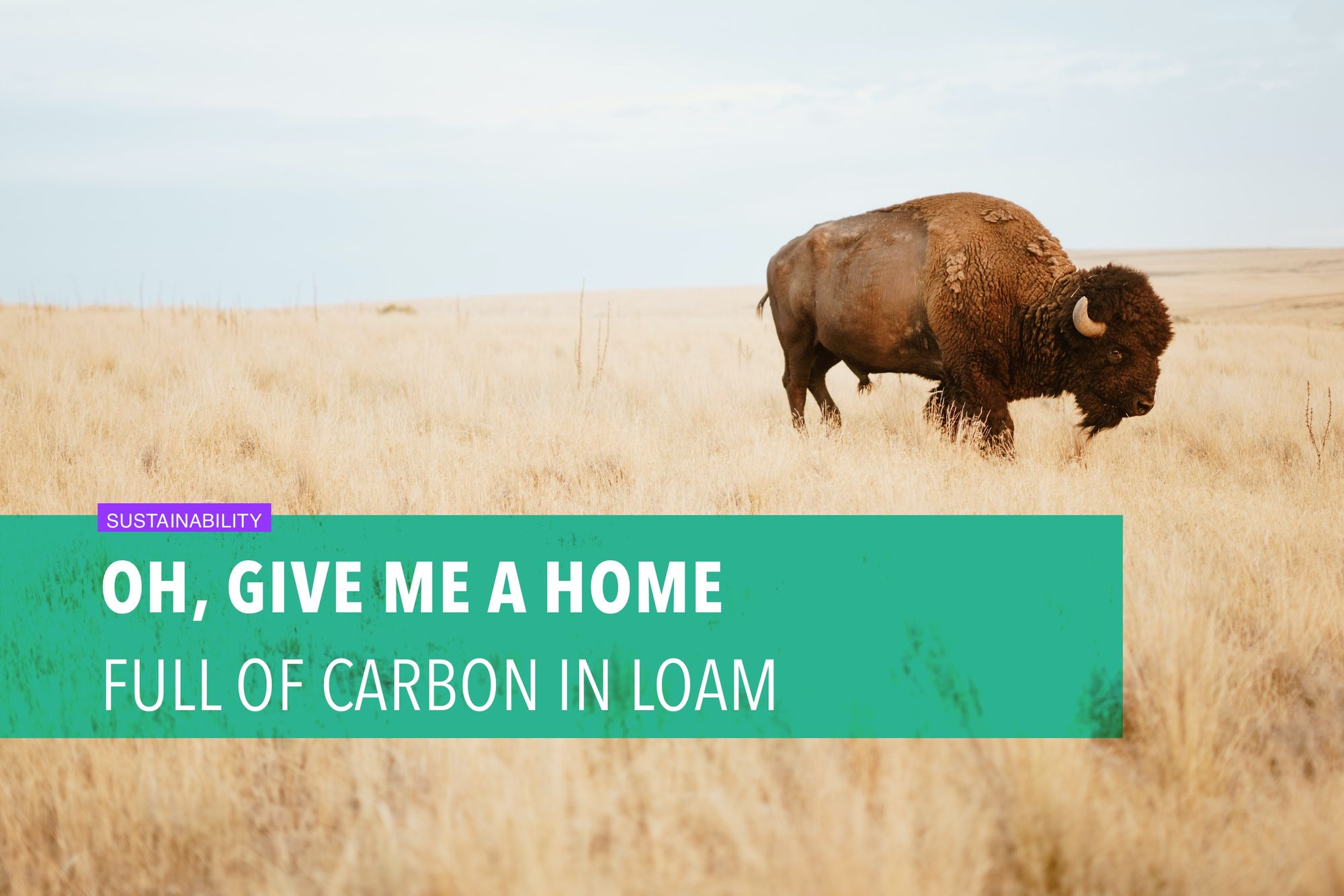 Oh, give me a home full of carbon in loam