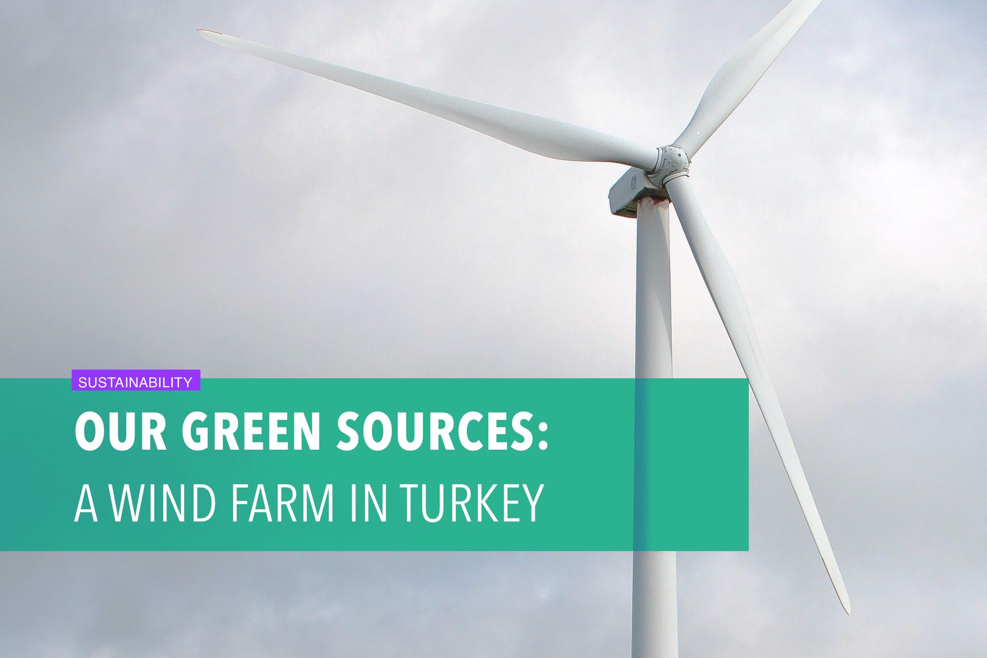 Our green sources: A wind farm in Turkey