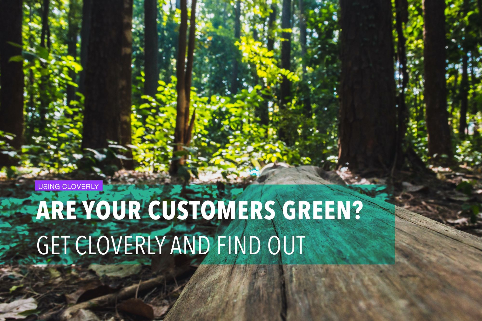 Are your customers green? Get Cloverly and find out