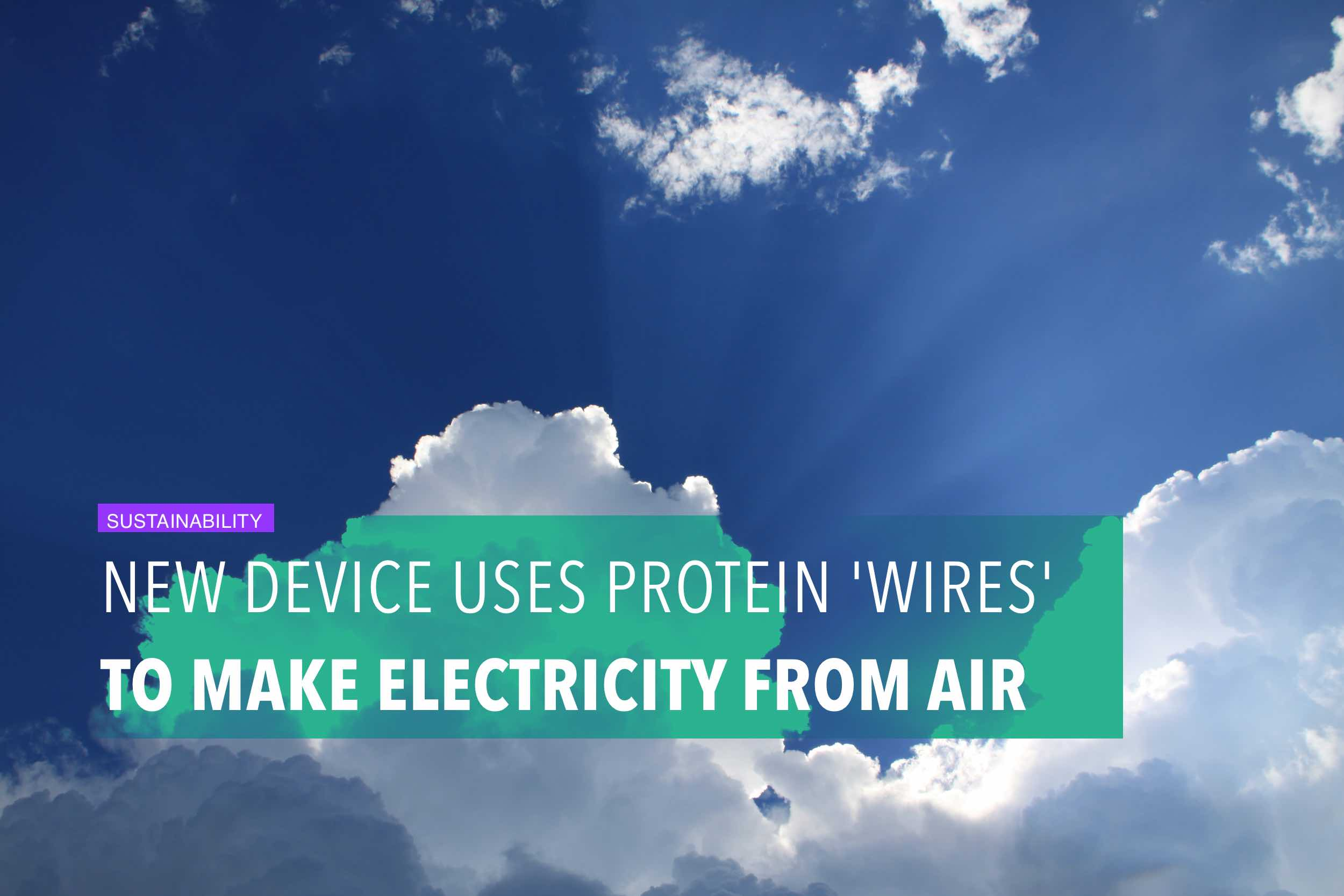 New device uses protein 'wires' to make electricity from air