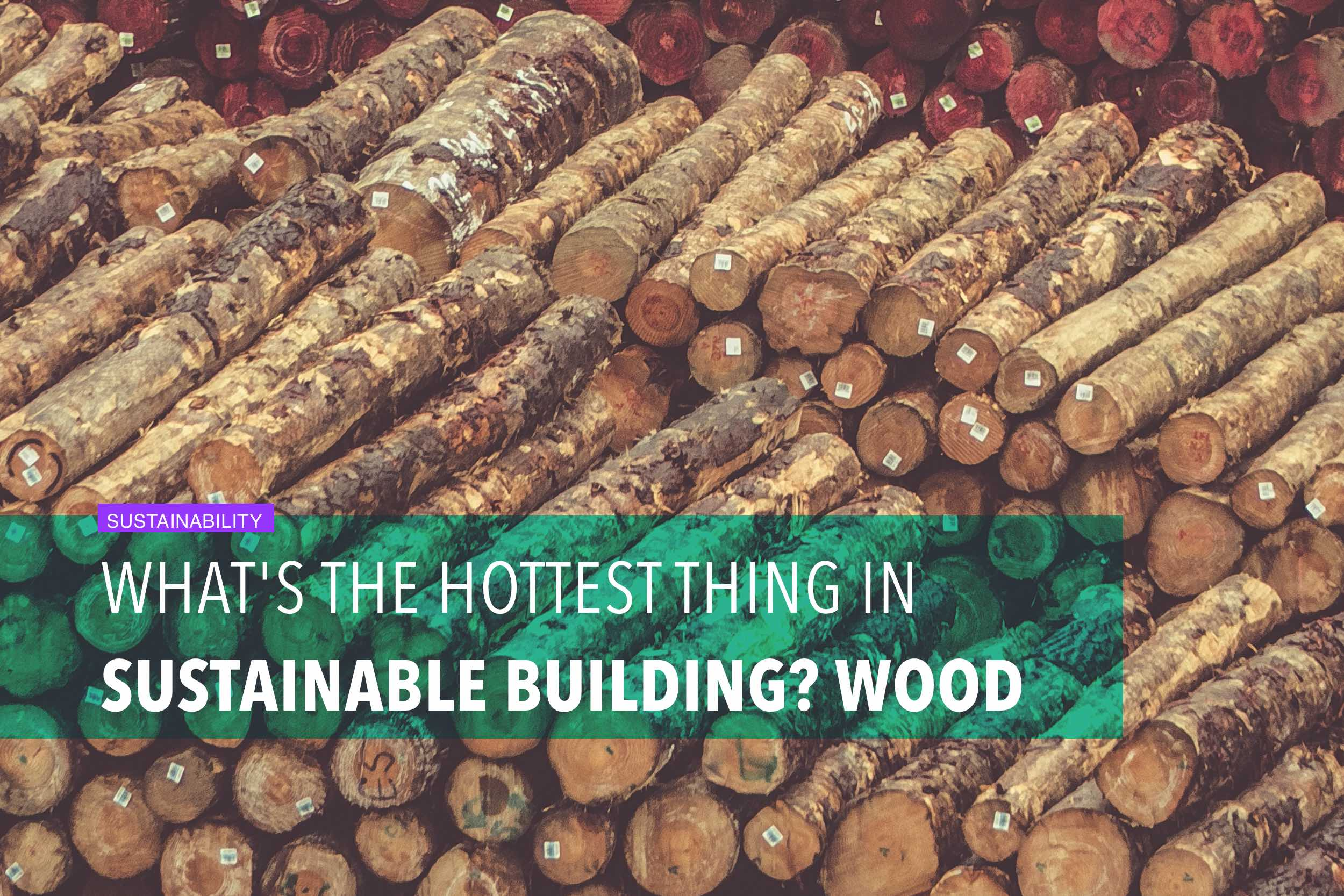 What's the hottest thing in sustainable building? Wood