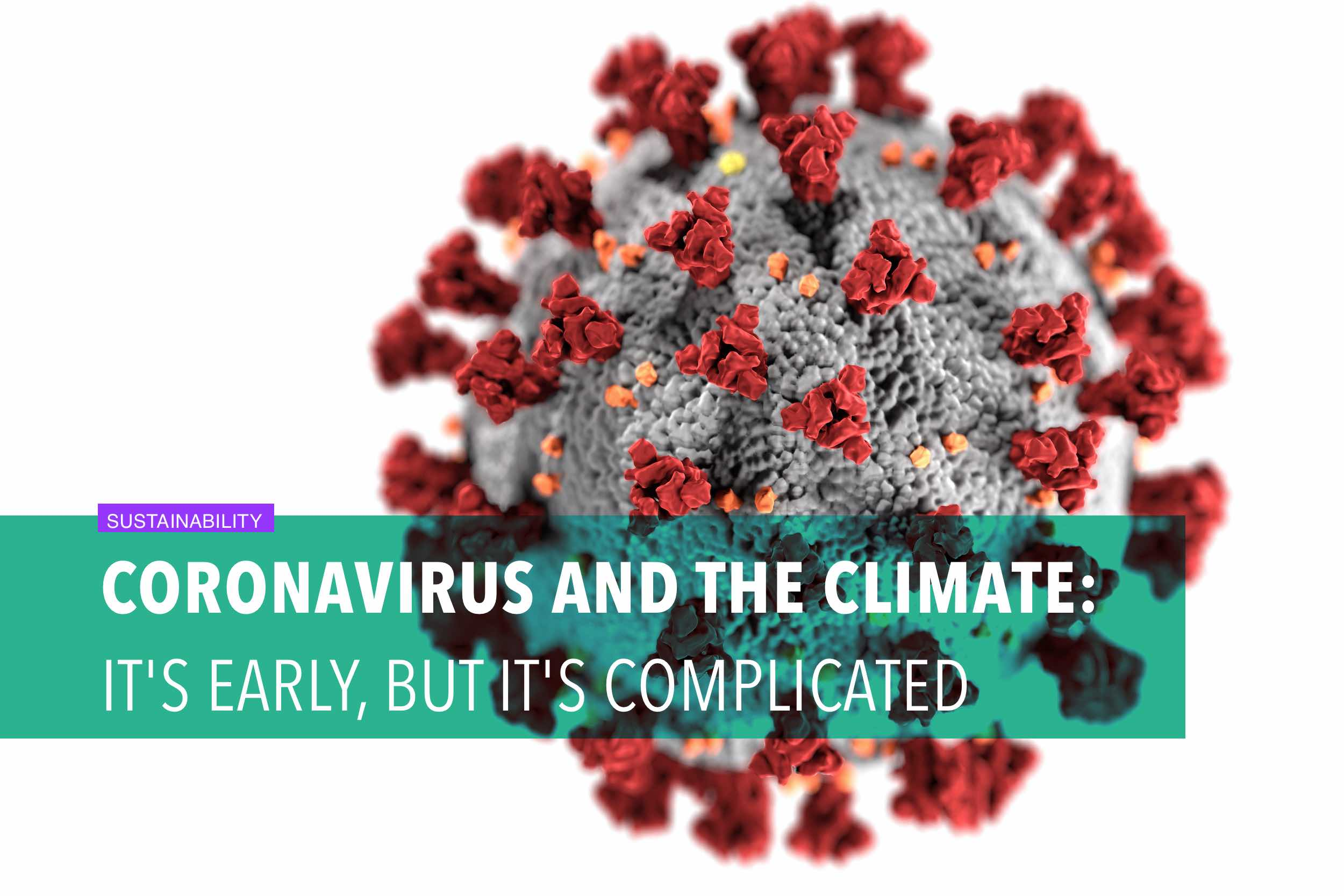 Coronavirus and the climate: It's early, but it's complicated