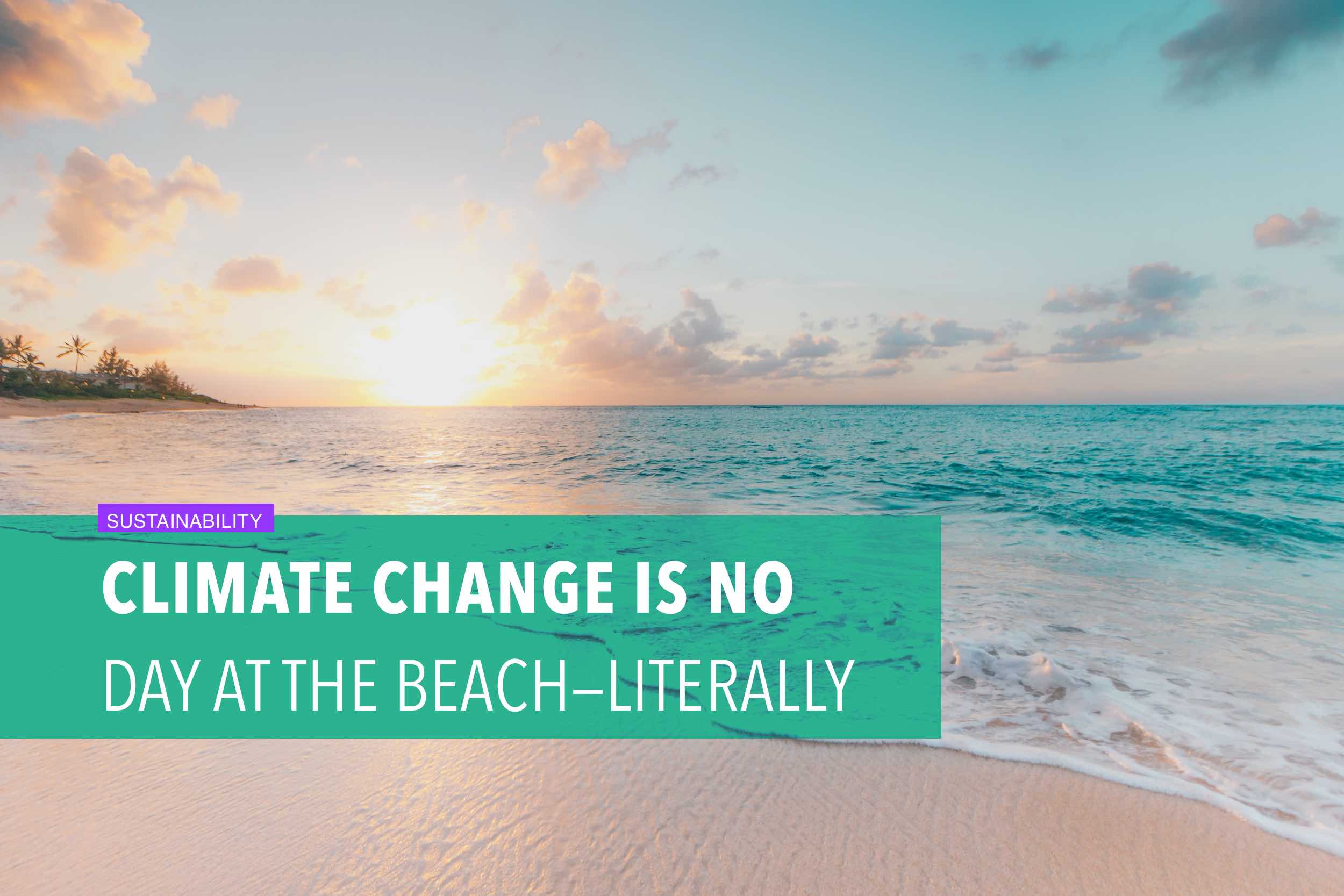 Climate change is no day at the beach—literally