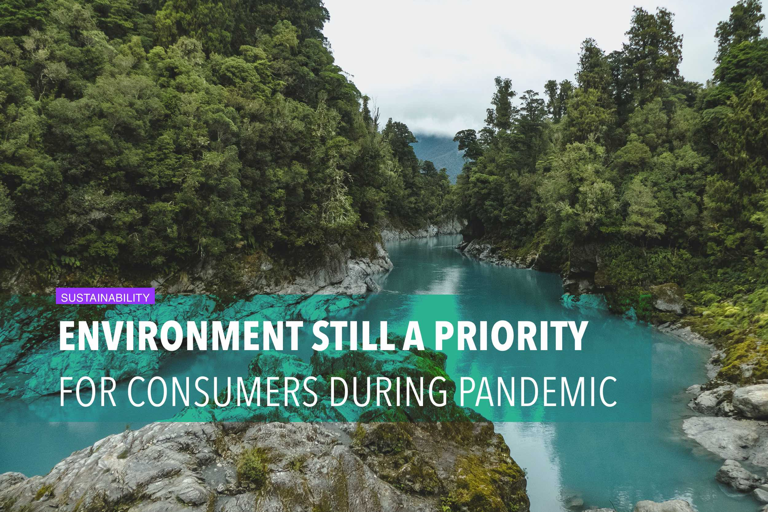 Environment still a priority for online consumers during pandemic