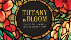 Tiffany in Bloom
