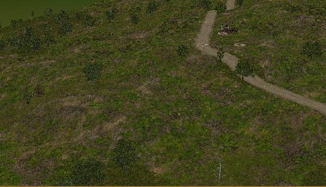 Asarge_grassy_ground