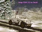 Bulge_psw_222_di