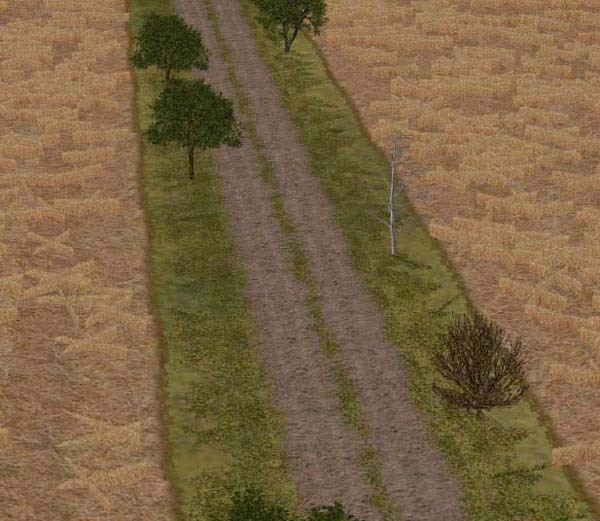 Gurra_grassy_road_cmak_cmmos4
