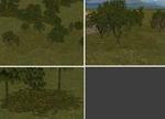 Gurra_tree_bases_summer_cmak_cmmos4