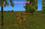 Normandy_88_flak_di
