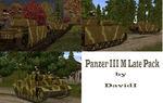 Panzer_iiim_pack_di