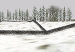 Fence_summer_and_winter_snow-ls