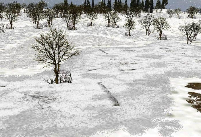 Marsh_winter_snow-ls