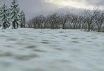 Sky_overcast_winter_snow-ls