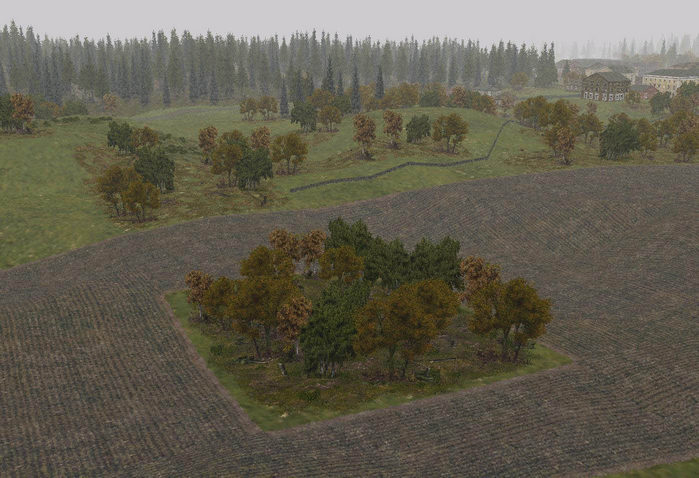 Tree-bases_woods_autumn-ls