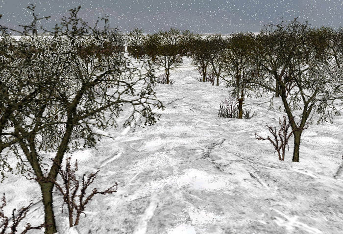 Tree-bases_winter_snow-ls
