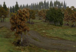 Trees_deciduous_autumn-ls