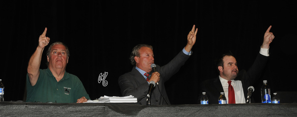 Greg Knowles leads the Auctioneers