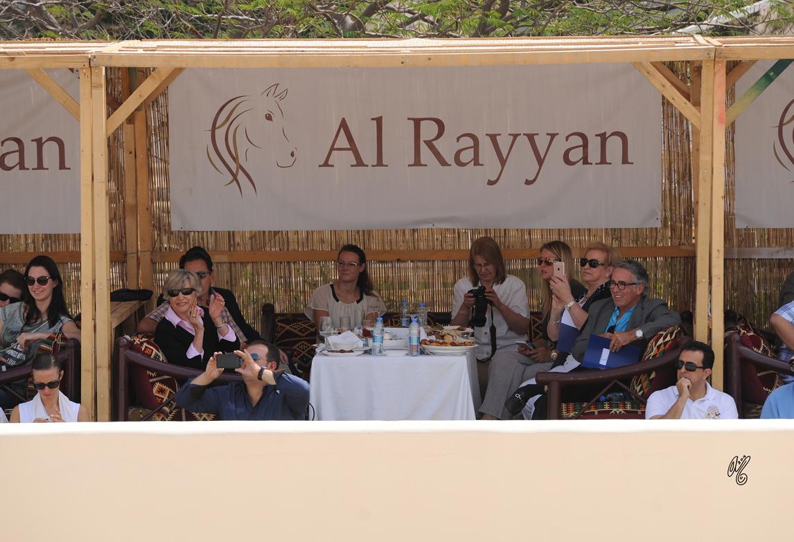 The 2016 Al Rayyan Presentation of Horses
