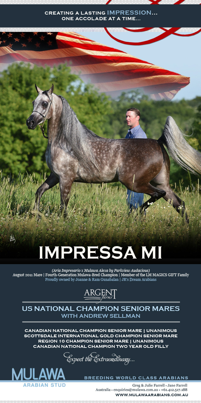 The Best Impression Is One That Endures Impressa Mi Us National Senior Mare Championship Arabian Horses Stallions Farms Arabians Horses For Sale Arabian Horse Network