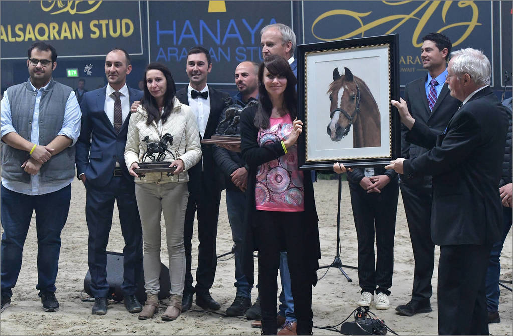 Horse of the Year: Padrons Psyche