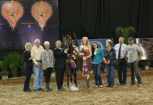 Celebrating with CF Hollywood Starlett and her Liberty win at the 2013 Arabian Breeder Finals