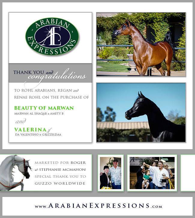 Congratulations Rohl Arabians