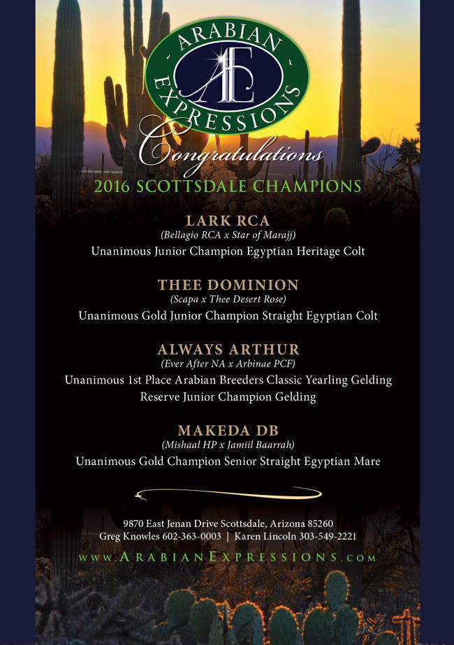 Congratulations to our 2016 Scottsdale Champions!