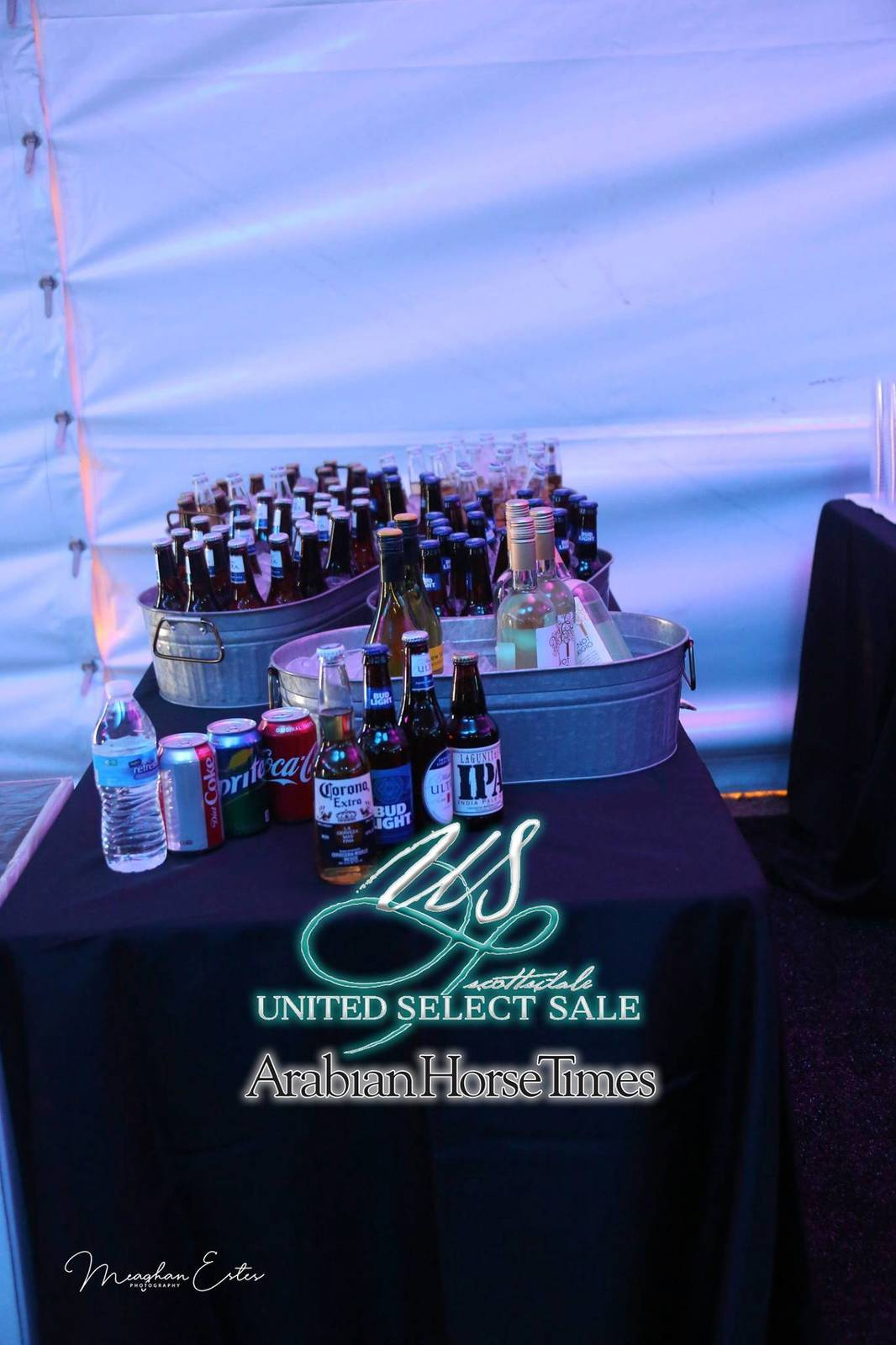 2019 United Select Sale ~ A Magical Night!!!