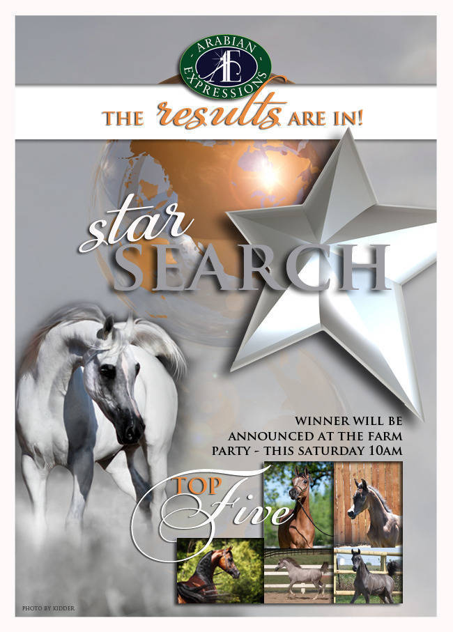 Star Search Results are in!
