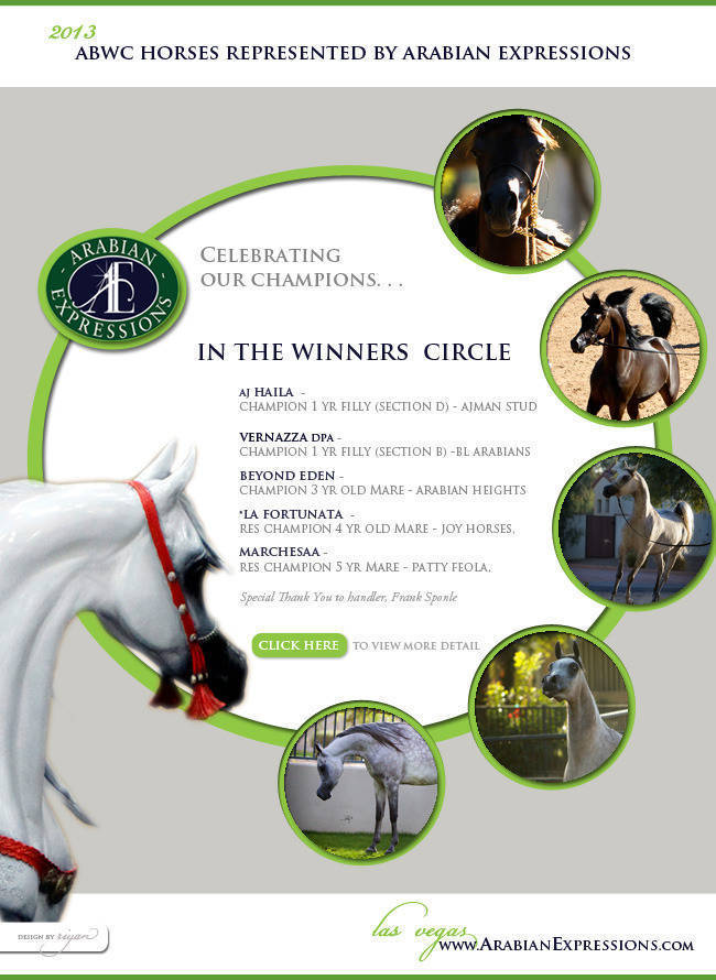 Celebrating the 2013 ABWC Champions