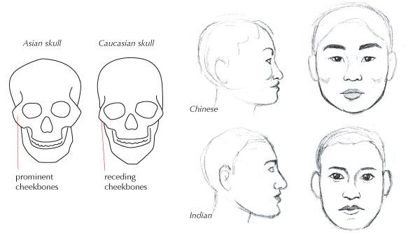 how to get prominent cheekbones