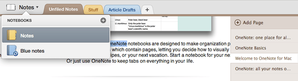 Organize notes in OneNote